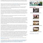 CitiGroup and JPMorgan Currency Rigging Telegraph-Macon (Macon, GA) by Dmitri Chavkerov